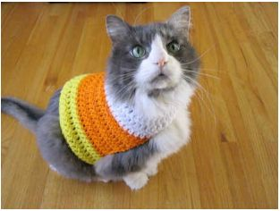 Everyone in the house needs a Halloween costume–even the fur-children. Making this candy corn pet sweater is really easy and only requires a little crochet knowledge. This particular pattern …