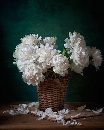Букет белых пионов, стоящий в плетеной корзинке на циновке на столе, автор Igor Sirbu