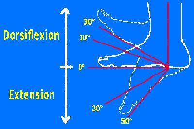 Un excellent exercice pour muscler la cheville et renforcer l' articulation du pieds afin d'éviter entorse et traumatisme