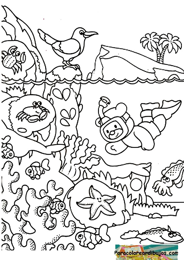 Dibujos Para Colorear E Imprimir Mes Del Mar