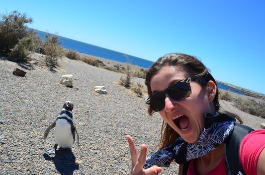 with penguins in Punta Tombo