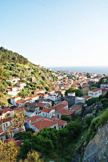 Norske reiseblogger: Plomari - en ekte Gresk opplevelse