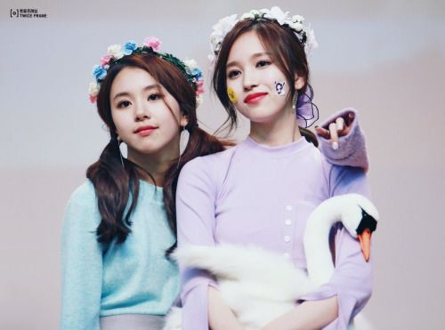 Twice Chaeyoung and Mina