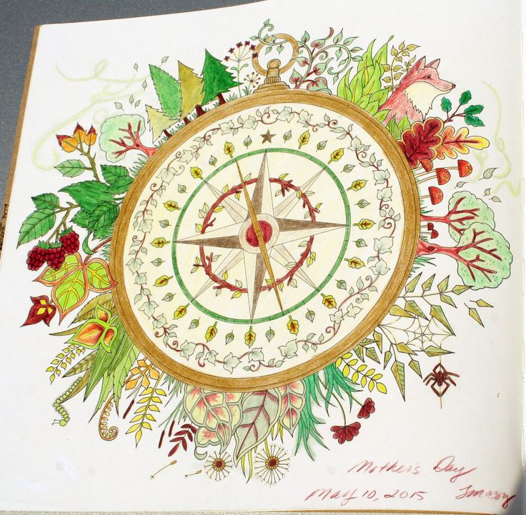 Johanna Basford Enchanted Forest Coloring Primacolor Premiere Compass