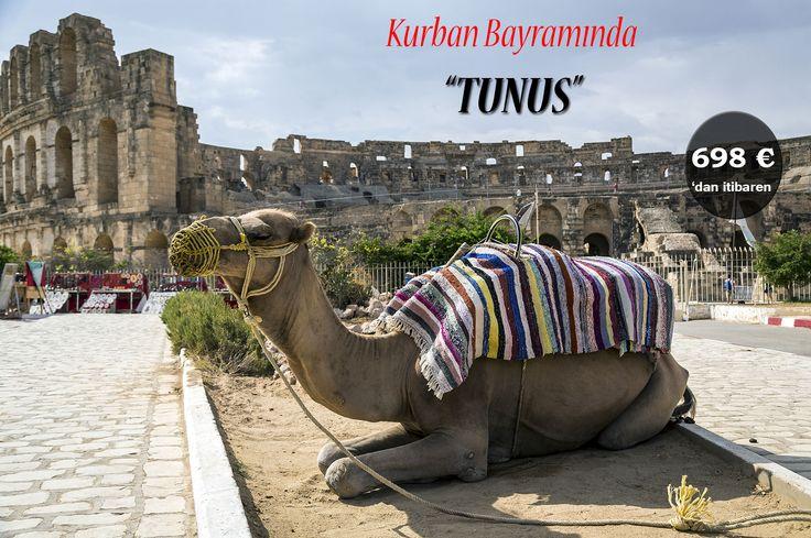 Tam bir turizm cenneti olarak kabul edilen TUNUS; egzotik kültürü, lezzetli yerel mutfağı, sıcakkanlı insanları, tarihî yapıları ve eğlenceli atmosferiyle farklılıkların peşinde koşan ziyaretçilerini memnun edecek kapasitede seçkin bir şehir...  Siz de Tunus'un renkli yaşamını yakından keşfetmeye ne dersiniz?  TUNUS Kurban Bayramı Tur Detayları için Lütfen Tıklayınız: http://www.afrikaseyahati.com/afrika-turalri/tunus-turu-kurban-bayrami