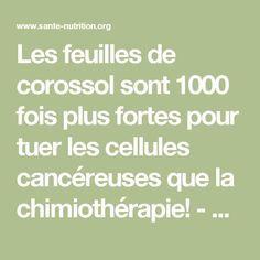 Les feuilles de corossol sont 1000 fois plus fortes pour tuer les cellules cancéreuses que la chimiothérapie! - Santé Nutrition