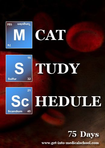 How to Study for the MCAT: Your 6-Month Study Plan ...