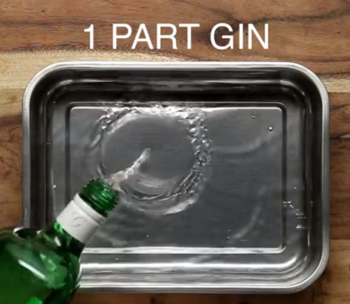 For all the gin lovers out there: Here's how to make a gin and tonic slush puppy