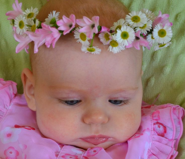 Daisy and pink hyacinth floral crown