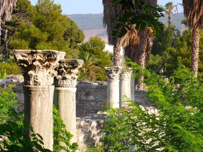 Ancient site in Kos town #kos #greekislands #greece