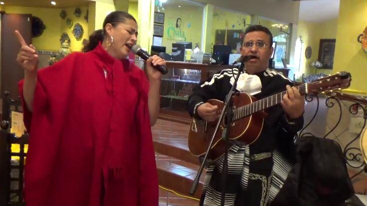 Mariachi Tradicional Tierra Mestiza «Jacinto Cenobio» de Francisco Madrigal