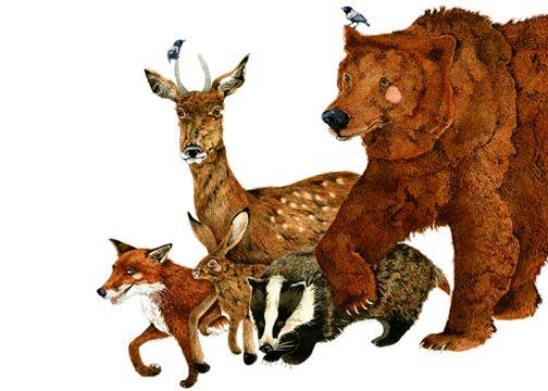 Bear, Fox, deer, Hare and Badger Print. Woodland Creatures Giclee 8x11 print