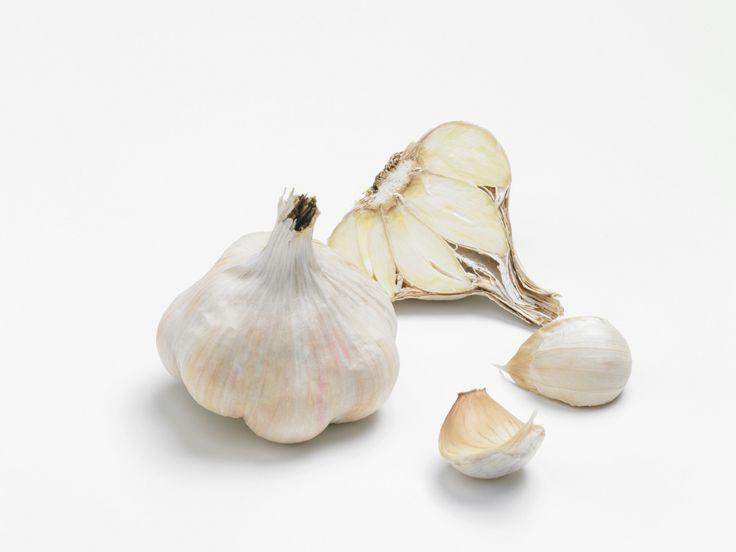 Garcua : Un ail blanc d'automne qui n'a pas peur de ses ...