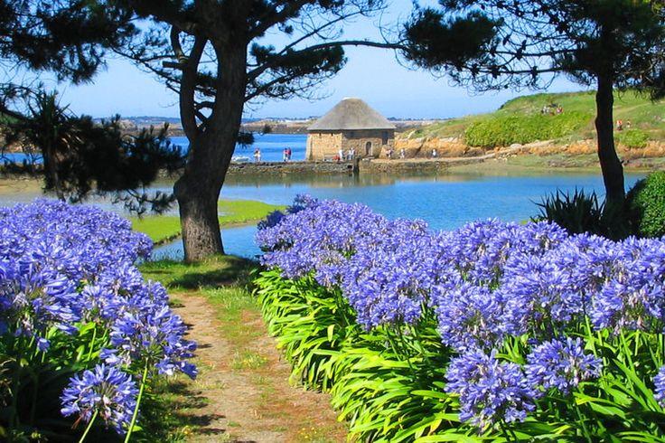 Prenez un grand bol d'air iodé et ressourcez-vous entre paysages à couper le souffle et plages de sable fin bordées d'une mer turquoise. Véritables petits bijoux de la nature, les îles de Bretagne garantissent un dépaysement total.