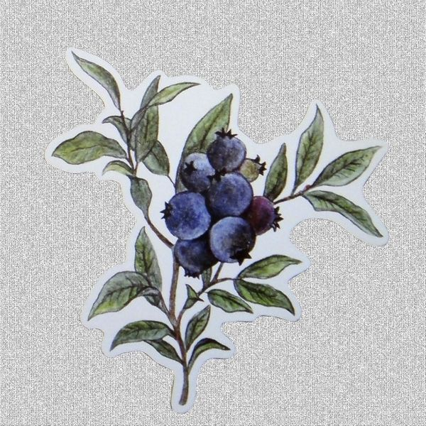 34 best berry tattoo images on pinterest tattoo ideas berry and ink. Black Bedroom Furniture Sets. Home Design Ideas