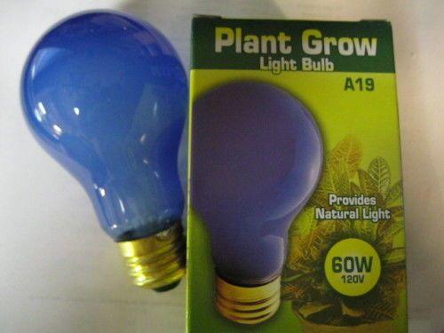 PLANT GROW LIGHT BULB 60WATT 120v NATURAL LIGHT STANDARD BASE A19 INDOOR GROWING #Bulbrite