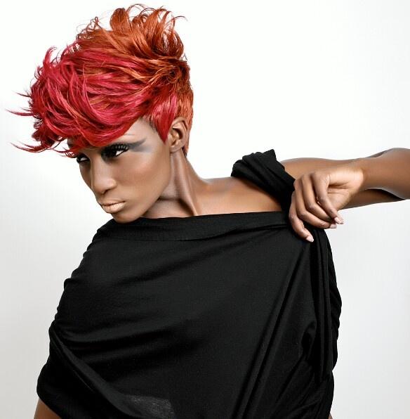 Sophisticates Black Hairstyles | HAIR - ETHNIC HAIR | Pinterest
