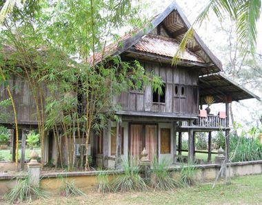 thesis thai online