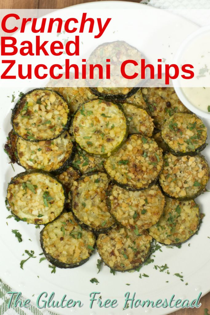 Delicious crunchy Panko breaded parmesan zucchini chips | oven baked healthy chips | easy gluten free recipe | game day recipe | football party recipe