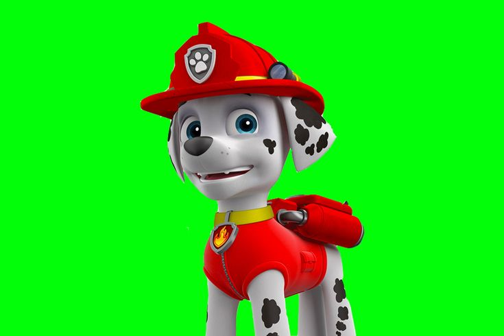 Making Marshall from Paw Patrol