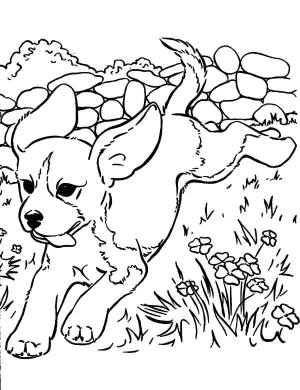 Running Dog Coloring Pages See The Category To Find More Printable