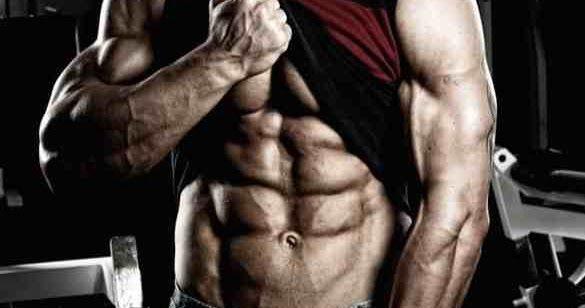 كيف تبني عضلات البطن أحد الأسئلة الأكثر شيوعا التي يطرحها الأشخاص الذين يرغبون في الاعتناء بجسدهم الدهون في البطن هي في الحقي Abdominal Muscles Muscle Health