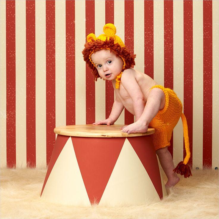 Een gevaarlijke leeuw in onze studio. #circus #leeuw #kinder #fotografie #kinderfotografie #kinderfotograafpatrick