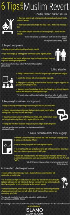 6 Tips for the Muslim Revert