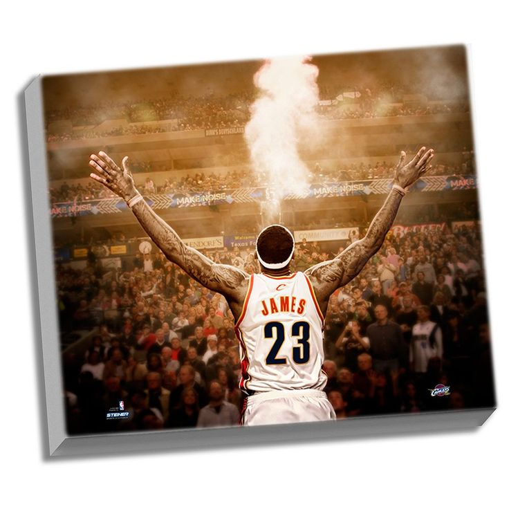"Steiner Sports Cleveland Cavaliers LeBron James ""Powder"" Back View 22"" x 26"" Stretched Canvas, Multicolor"