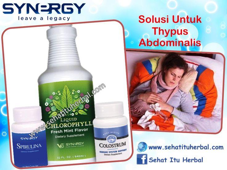 Solusi Untuk Typus - Sehat Itu Herbal