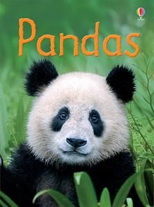 Where do Pandas live?  What do they eay?  Can Pandas climb trees?  In this book, you'll find the answers and lots more about the fascinating lives of Pandas.  Part of the Usborne Beginners series, an amazing collection of information books with an easy-reading text.  Sells for $4.99