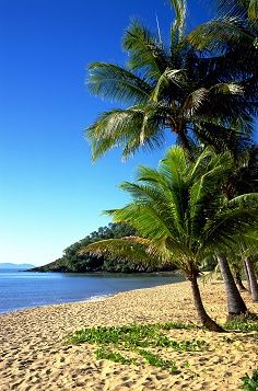 Trinity Beach, Cairns,  Queensland, Australia