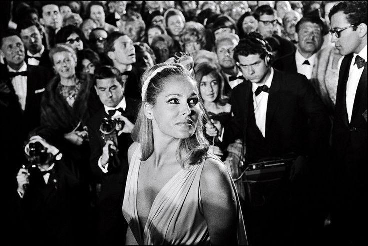 1965 год. Урсула Андресс и репортеры СМИ. Каннский кинофестиваль: фотографии из прошлого