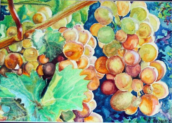 Original watercolor painting Grapes fruits kitchen artwork