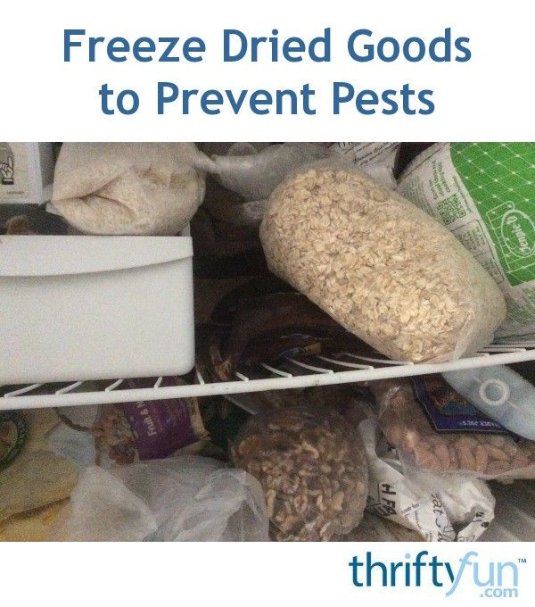 In order to avoid moths and pantry pests, take your dry goods as soon as you purchase them and stick them in the freezer for a minimum of three days. This generally kills any eggs or larvae that are just waiting to destroy your food.