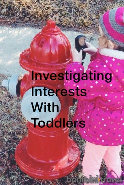 Investigating Interests with Toddlers | reggio inspired learning with little ones | Bambini Travel