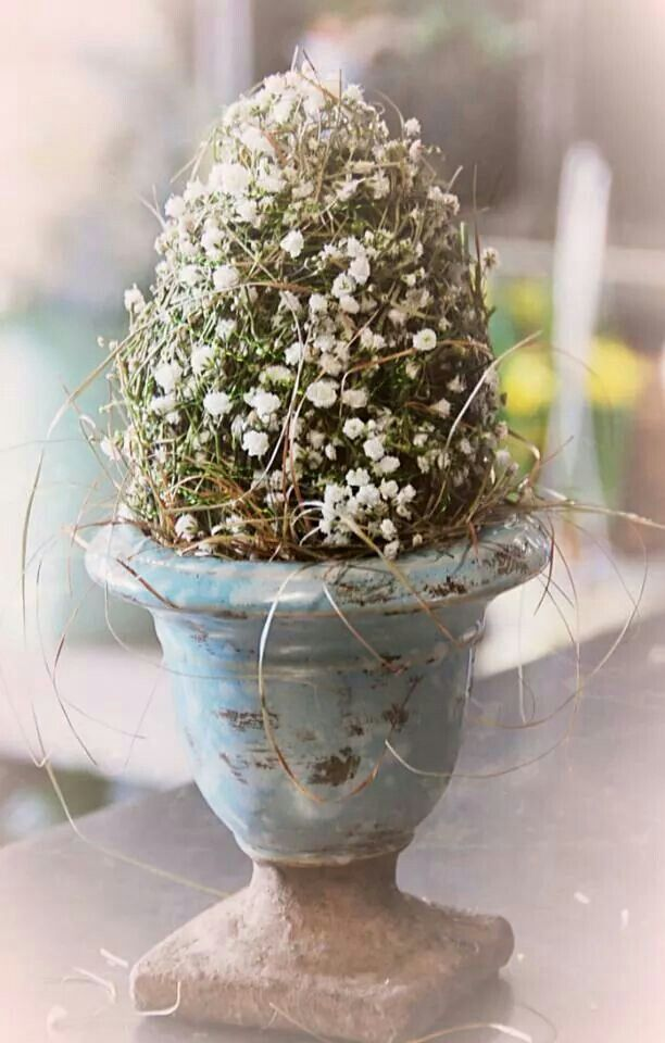Artist Fountain Flowers