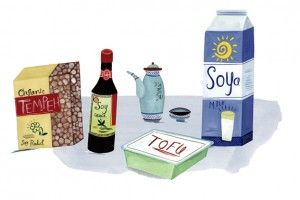 Soy Products List - http://blog.preciseportions.com/soy-products-list/