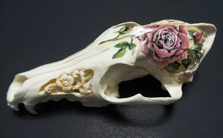 Rose Coyote Skull - Hand Carved Coyote Skull - Hand Painted Coyote Skull - Carved skull - Coyote skull - by CreativeWorkByAnnie on Etsy