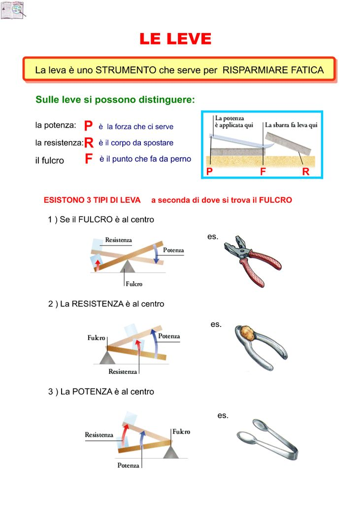 Le Leve Sc. Elementare | AiutoDislessia.net