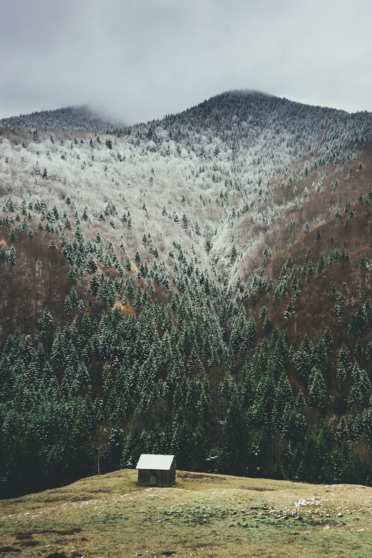 "moon-sylph: "" banshy: "" Pasul Tihuța, România // Buzac Marius "" I get to see this beautiful country again in two weeks"