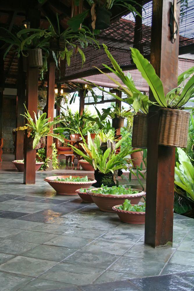 Best 25 balinese decor ideas on pinterest balinese for Balinese garden designs ideas