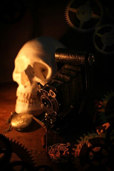 Skull camera vintage gothic dark