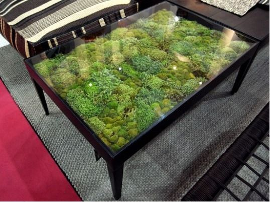 It's like terrarium furniture. Maybe a deck glass top table to serve as greenhouse or dehydrator? More
