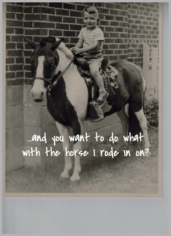 ...and you want to do what with the horse I rode in on?