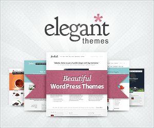 Elegant Themes – Como Tornar o seu Site Profissional com um Template Elegante e Versátil