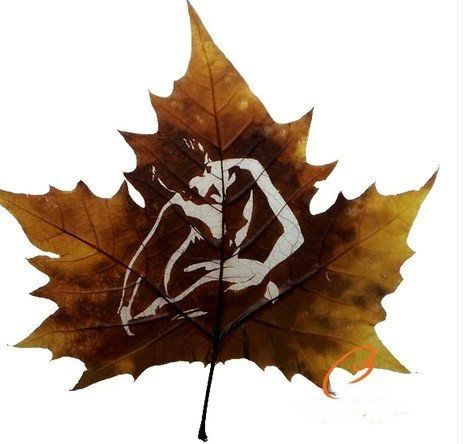 leafcarving_handmadecraft@outlook.com  Handmade carving,leaves of French sycamore tree, 20-25 CM.
