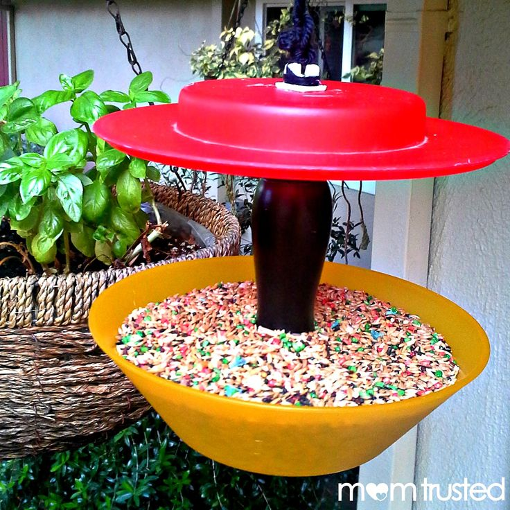 DIY Bird Feeder photo