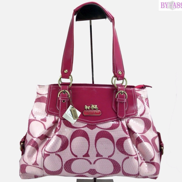 Welcome To You Enter Our Handbags Coach Fashion Comfort Coexist