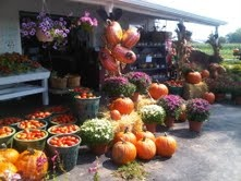 Our Market in The Fall